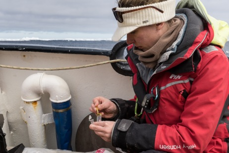 That's me processing poop samples down in Antarctica last year for a similar project. Photo credit: Alex Borowicz, December 2015.
